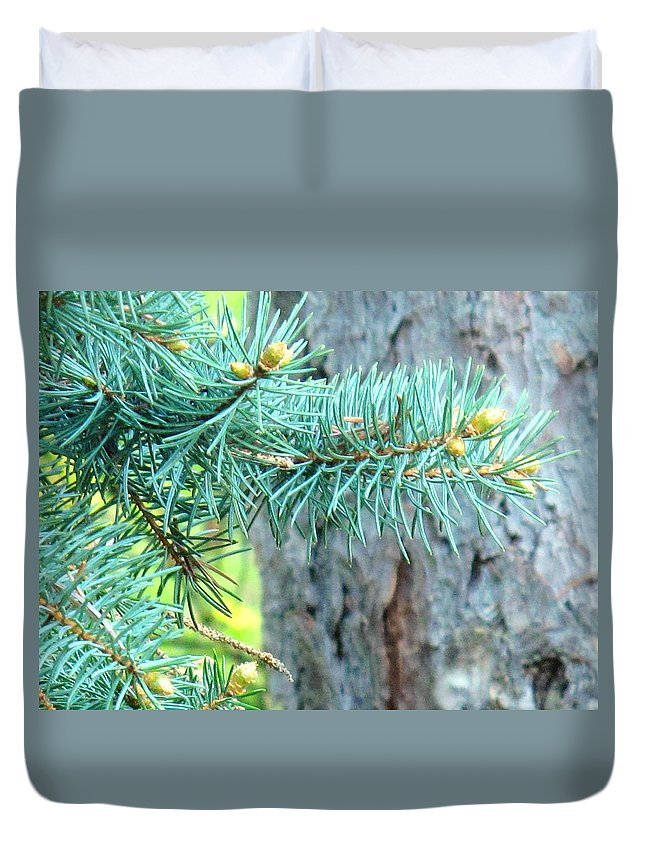 Pine Duvet Cover featuring the photograph Needles by Ian MacDonald