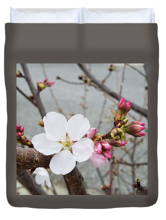 Blossom Duvet Cover featuring the photograph Neighborhood Blossom by Rosanne Compitello