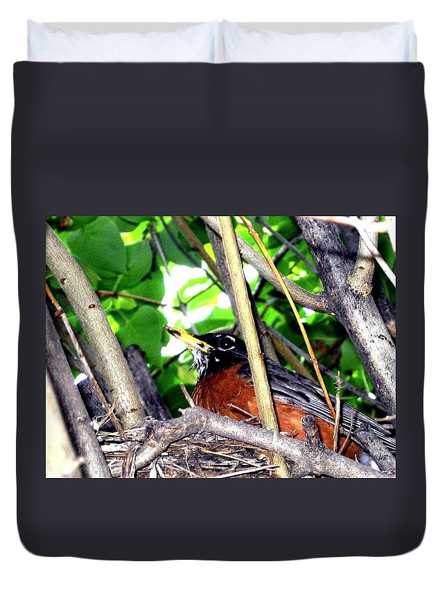 Robin Duvet Cover featuring the photograph Nesting Robin by Will Borden