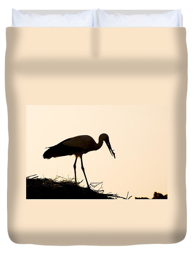Stork Duvet Cover featuring the photograph Nesting Stork by Mick House