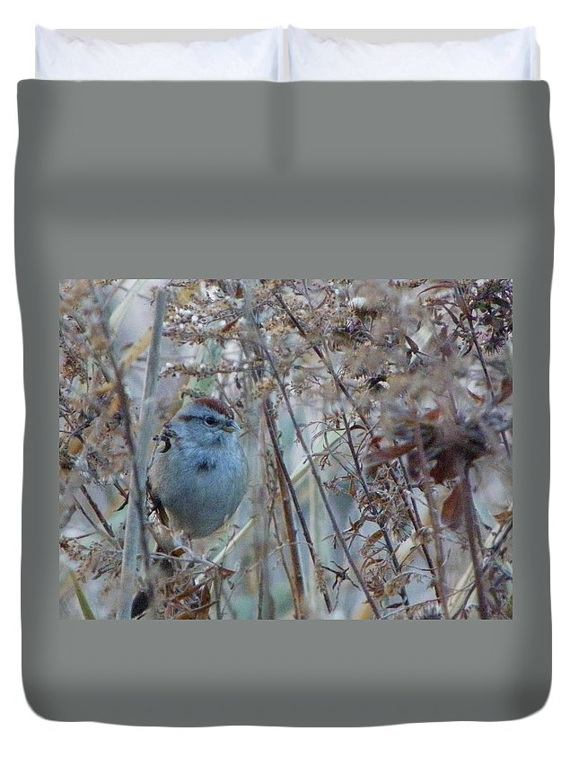 Nature Duvet Cover featuring the photograph Nestled In by Peggy King