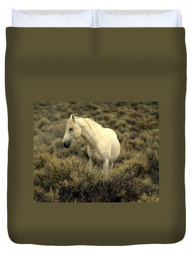 Wild Horses Duvet Cover featuring the photograph Nevada Wild Horses 4 by Marty Koch