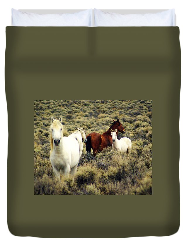 Horses Duvet Cover featuring the photograph Nevada Wild Horses by Marty Koch