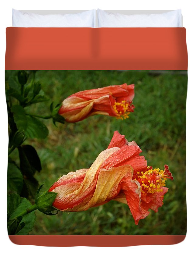 Nature Duvet Cover featuring the photograph New Beginnings by Annie's Images