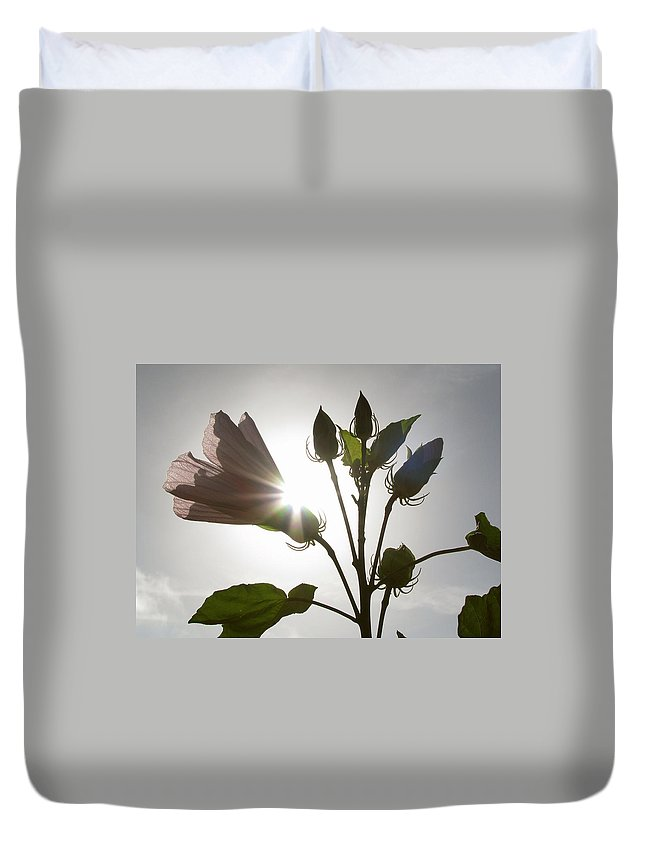 Nature Duvet Cover featuring the photograph New Day by Peg Urban
