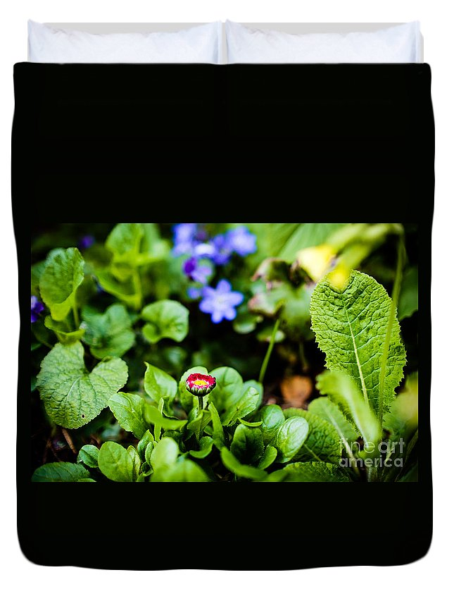 Beautiful Duvet Cover featuring the photograph New Season For Bellis Perennis Bellissima Red by Ismo Raisanen