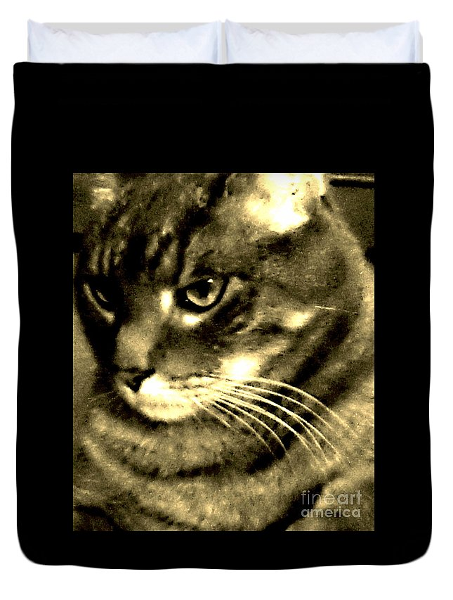 Cat Duvet Cover featuring the photograph Newsprint Angel by Percival Vince