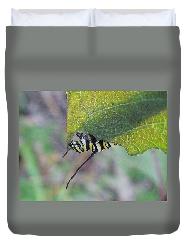Nature Duvet Cover featuring the photograph Nibbler by Peggy King