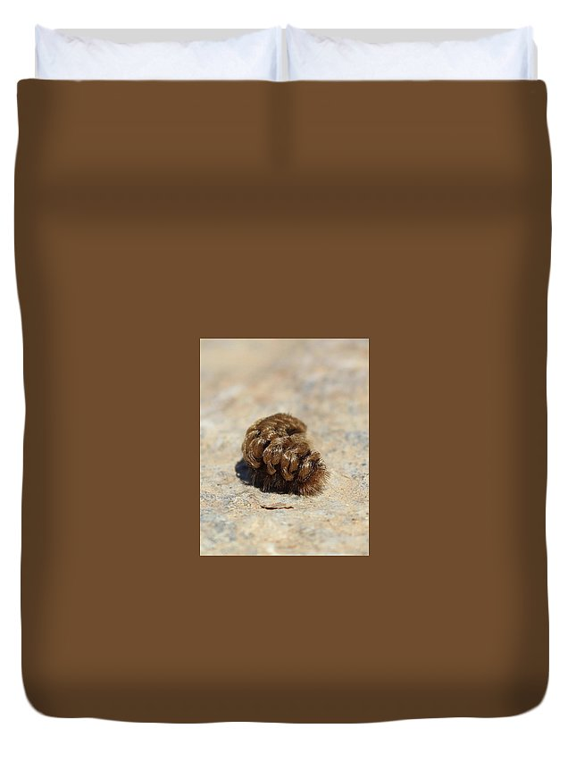 Art Duvet Cover featuring the photograph Nice Hairdo by Christina Boggs
