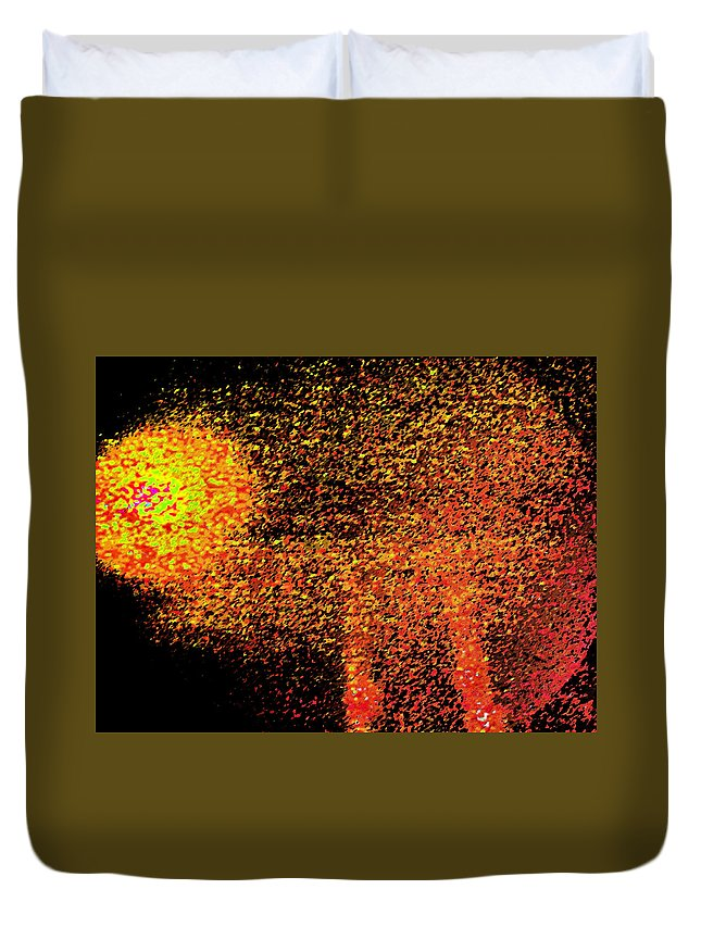 Abstract Duvet Cover featuring the digital art Night As A Many Splendored Thing by Lenore Senior