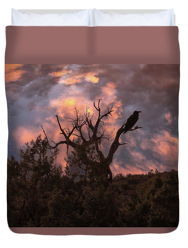 Raven Duvet Cover featuring the photograph Night Of The Raven by Boyce Fitzgerald