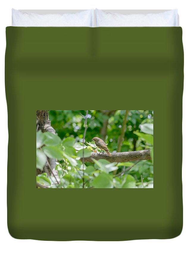 Kiev Duvet Cover featuring the photograph Nightingale In The Wood by Alain De Maximy