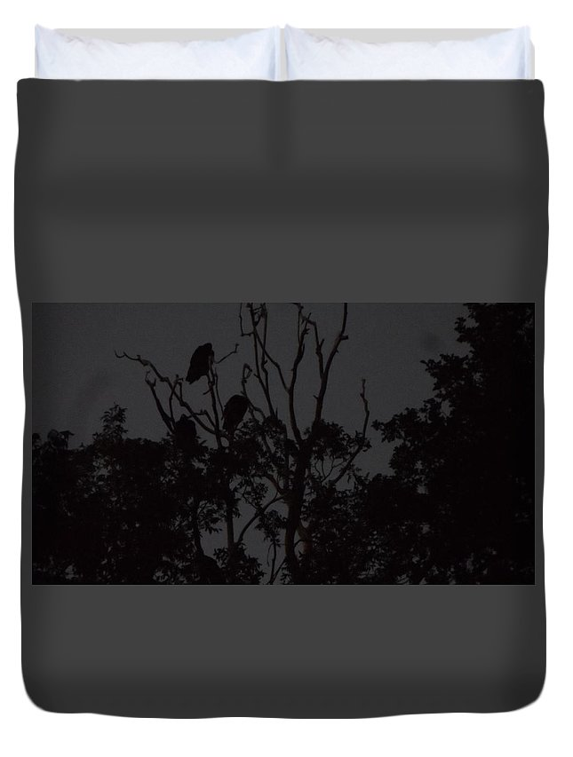 Dead Tree Duvet Cover featuring the photograph Nighttime by Susan Reynolds Holloway
