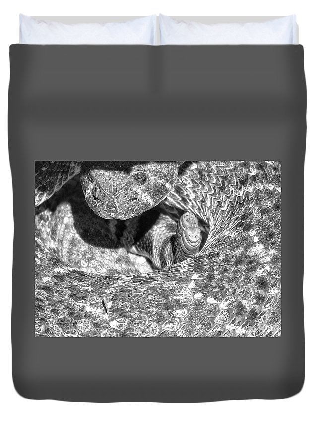 Blacknwhite Rattler Rattlesnake Snake Duvet Cover featuring the photograph No Pictures, Please by Michelle Farrow