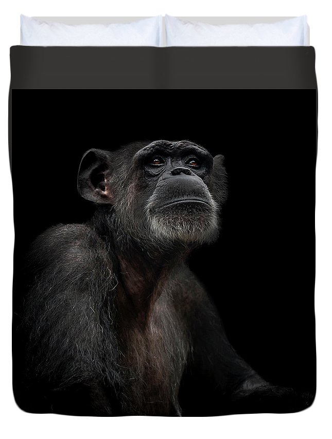 Chimpanzee Duvet Cover featuring the photograph Noble by Paul Neville