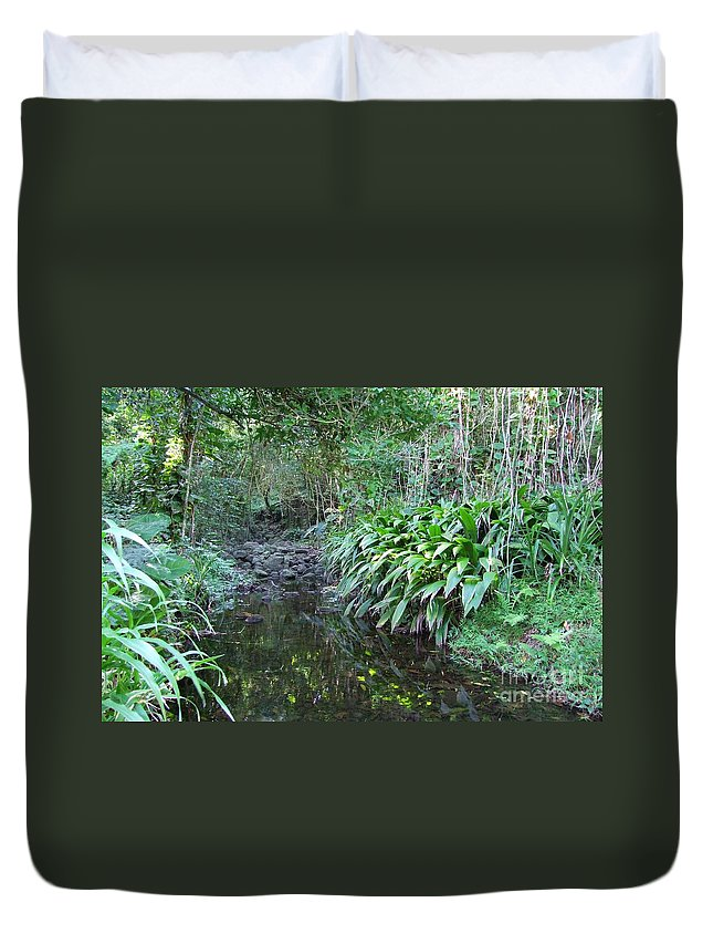 Mary Deal Duvet Cover featuring the photograph North Shore Forest Glade by Mary Deal