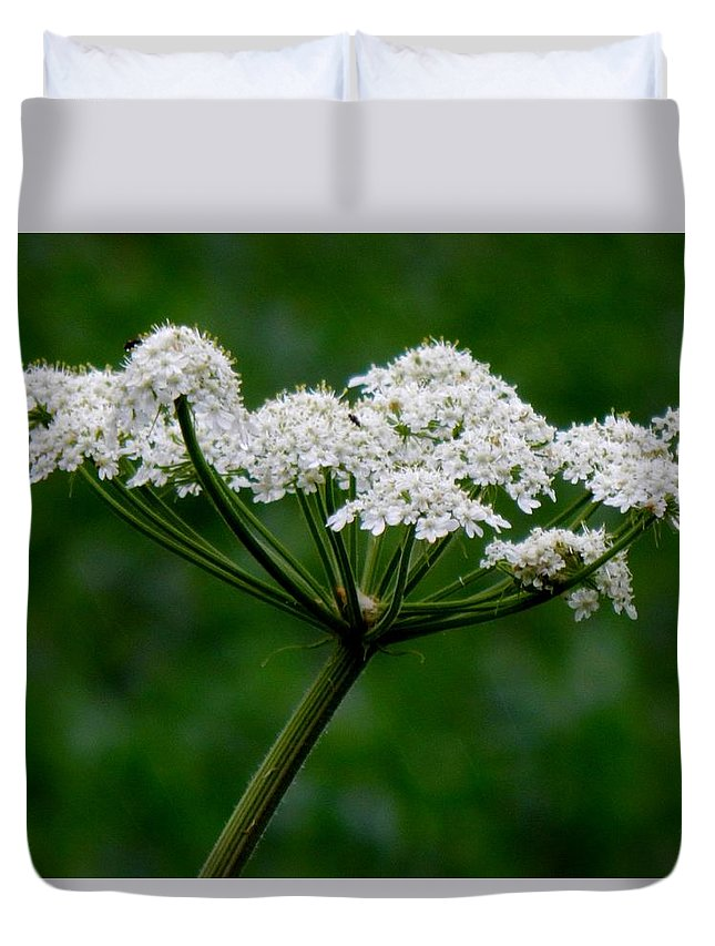 Spring Duvet Cover featuring the photograph Not Royalty by Wild Thing