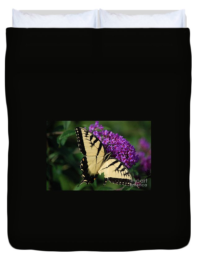 Butterfly Duvet Cover featuring the photograph Nothing Is Perfect by Debbi Granruth