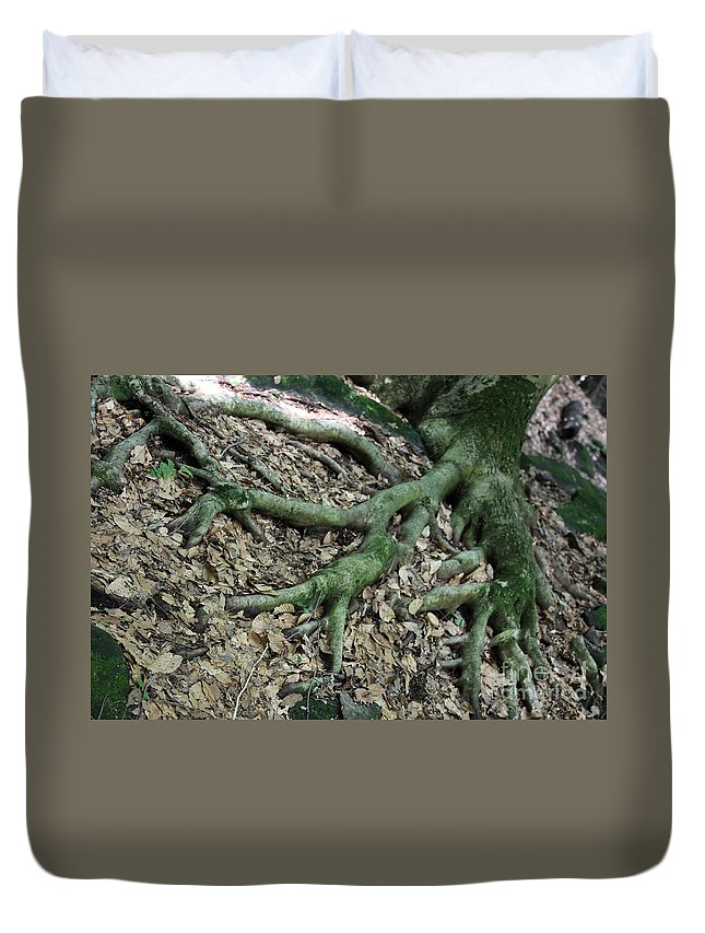 Trees Duvet Cover featuring the photograph Nourishment by Amanda Barcon