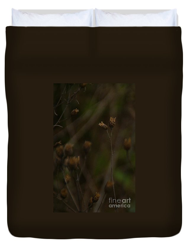 Wildflowers Duvet Cover featuring the photograph November by Linda Shafer