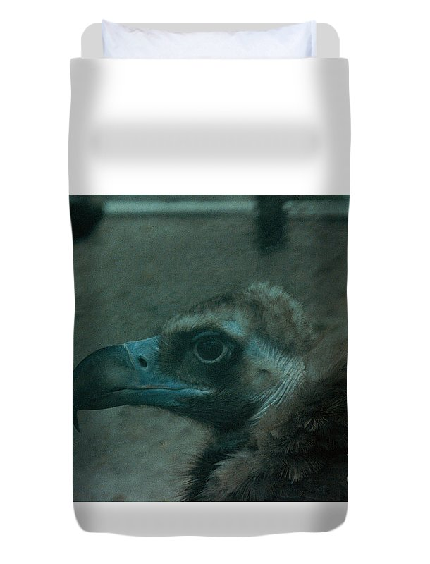Birds Duvet Cover featuring the photograph Now What by Jeffery L Bowers