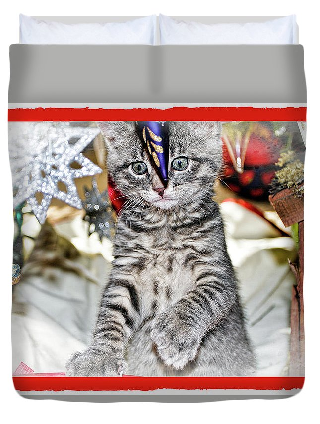 Recent Duvet Cover featuring the photograph Now Where Did That Ornament Go I Just Saw It A Second Ago by Geraldine Scull