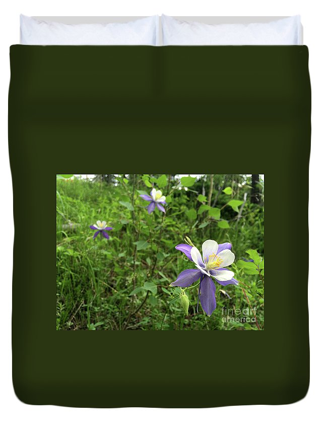 Phone Photo Duvet Cover featuring the photograph Colorado Columbine On Pikes Peak Colorado by Adam Long