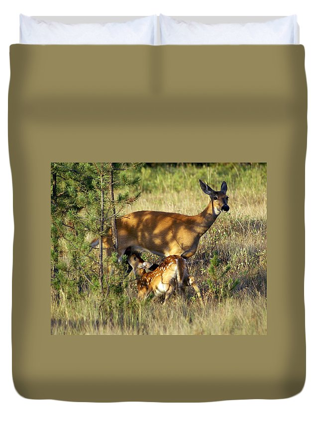 Deer Duvet Cover featuring the photograph Nursing Fawn by Marty Koch