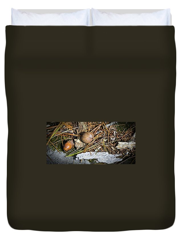 Nuts Duvet Cover featuring the photograph Nuts by Teresa Mucha