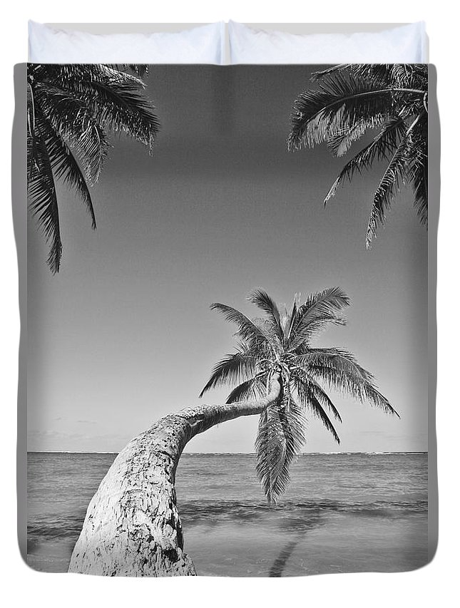 Afternoon Duvet Cover featuring the photograph Oahu Palms by Tomas del Amo - Printscapes