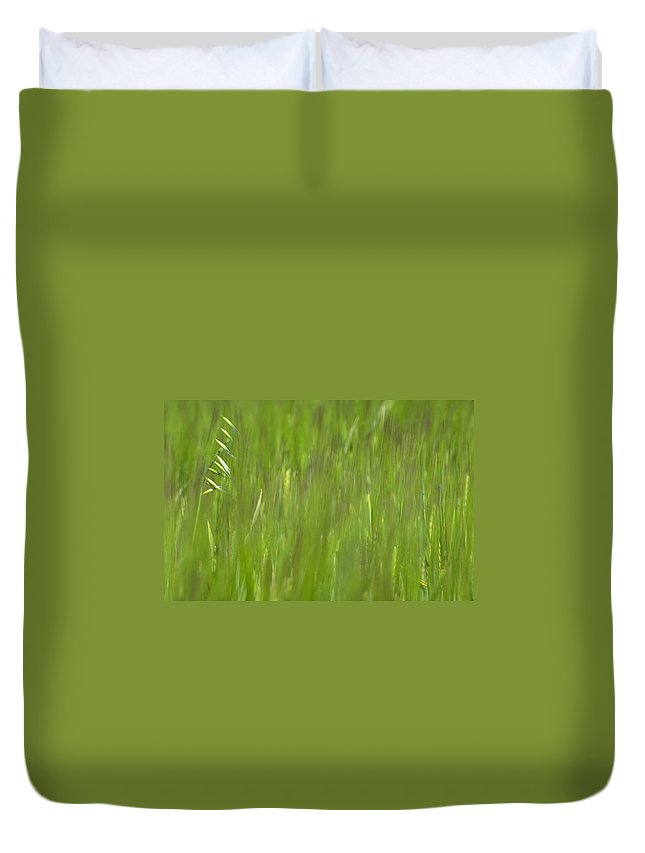 Oat Field Duvet Cover featuring the photograph Oatfield by Michael Mogensen