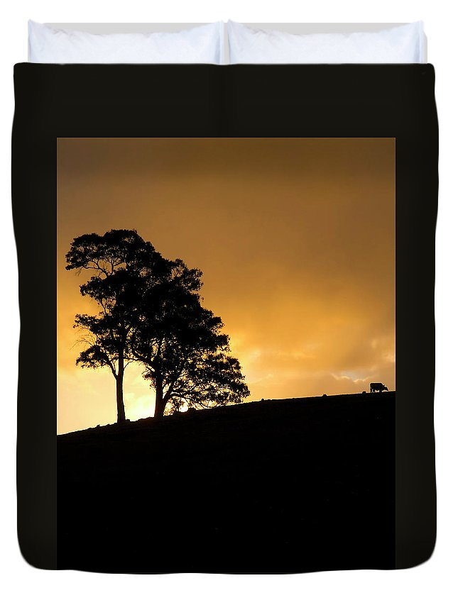 Hills Duvet Cover featuring the photograph Oblivious by Mike Dawson