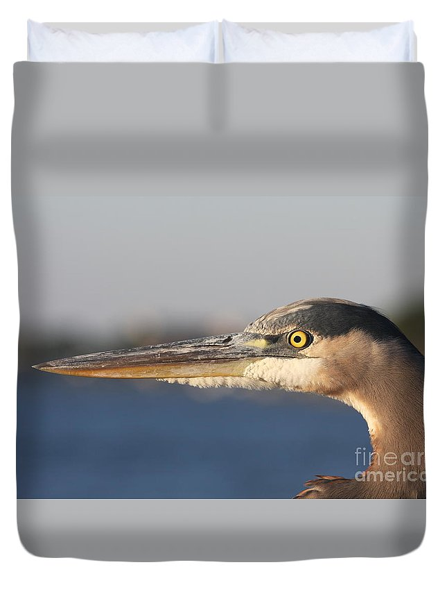 Heron Duvet Cover featuring the photograph Observant Eye - Heron Portrait by Christiane Schulze Art And Photography