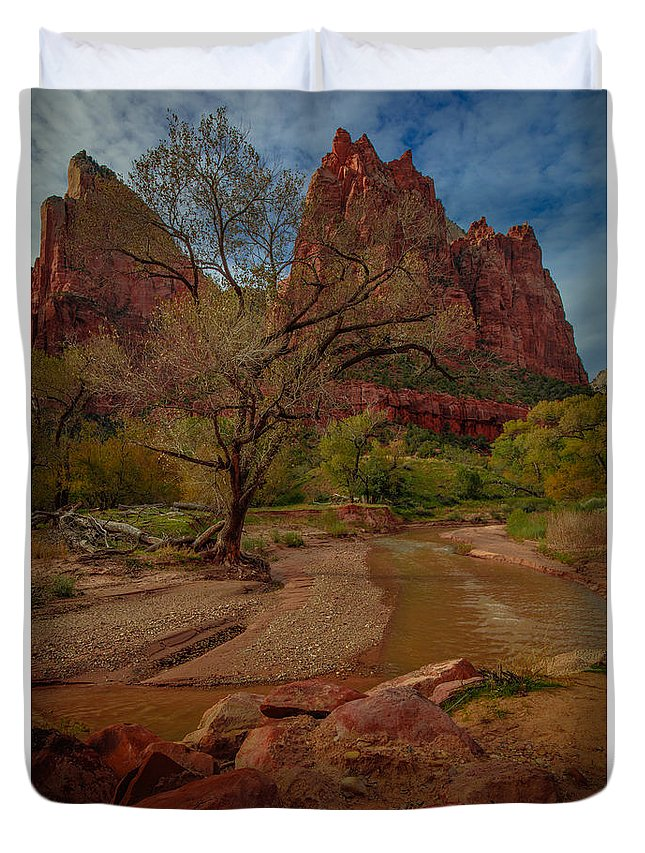 South-west Duvet Cover featuring the photograph October In Zion by Tim Bryan