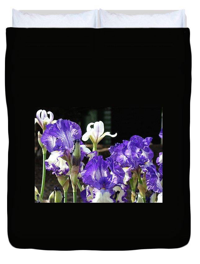 Iris Duvet Cover featuring the photograph Office Art Prints Iris Flower Botanical Landscape 30 Giclee Prints Baslee Troutman by Baslee Troutman