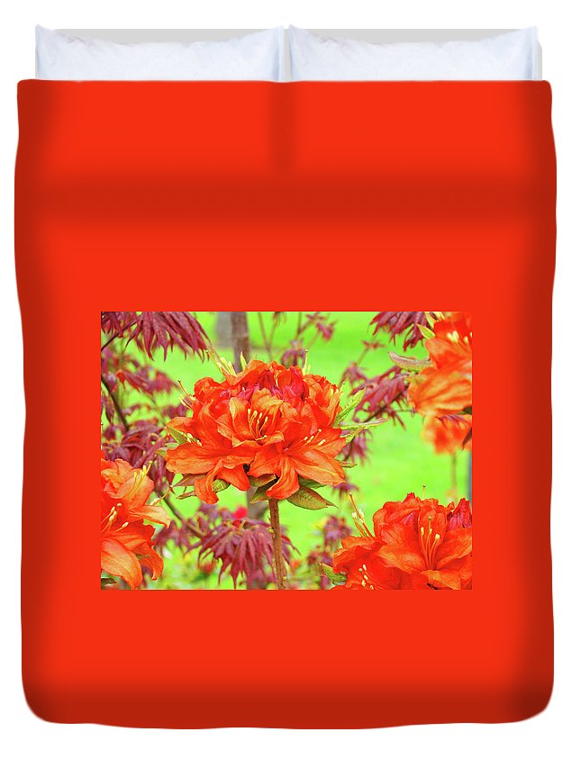 �azaleas Artwork� Duvet Cover featuring the photograph Office Art Prints Orange Azalea Flowers Landscape 13 Giclee Prints Baslee Troutman by Baslee Troutman