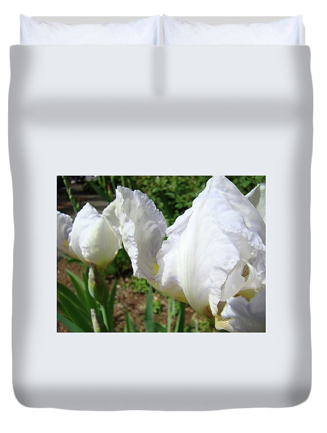 Iris Duvet Cover featuring the photograph Office Art White Iris Flowers Giclee Art Prints Irises Baslee Troutman by Baslee Troutman
