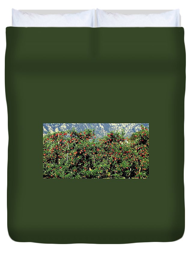 Apples Duvet Cover featuring the photograph Okanagan Valley Apples by Will Borden