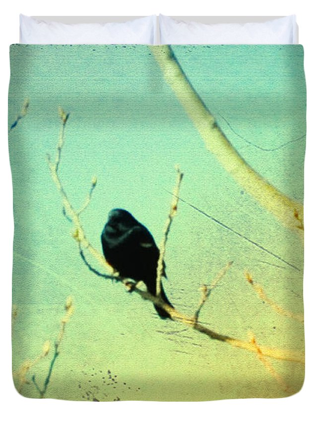 Blackbird Duvet Cover featuring the photograph Old Crow Medicine Show by Bill Cannon