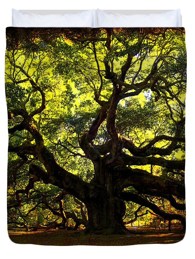 Angel Oak Duvet Cover featuring the photograph Old Old Angel Oak In Charleston by Susanne Van Hulst