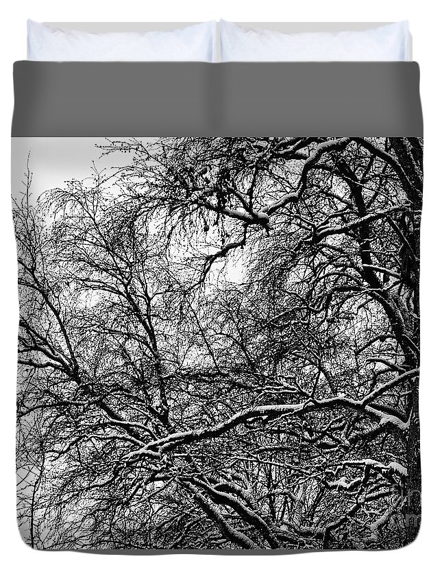 Birch Duvet Cover featuring the photograph Old Tree 6 by Esko Lindell