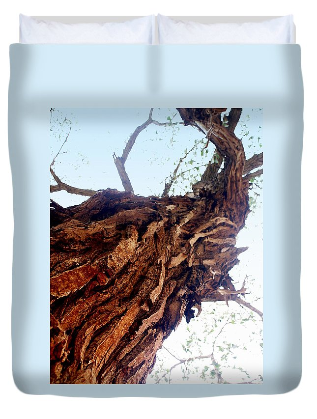 Tree Duvet Cover featuring the photograph Old Tree by Marty Koch