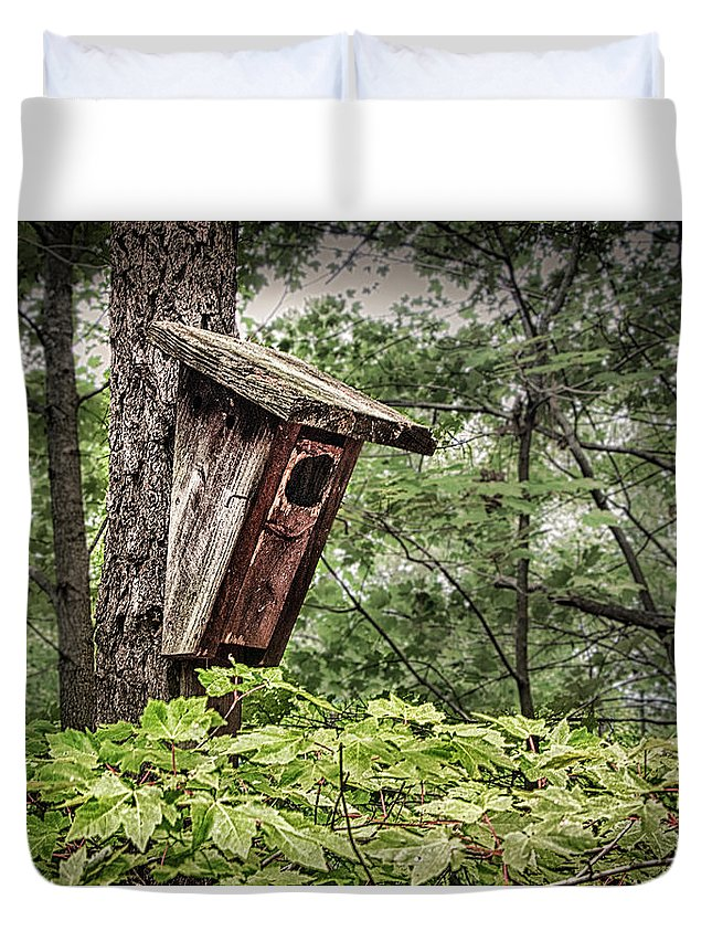 Hampton Duvet Cover featuring the photograph Old Weathered Worn Bird House In Summer by Robert Anastasi