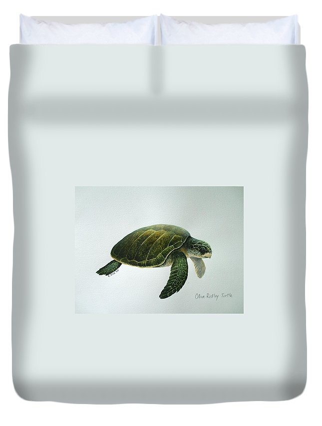 Olive Ridley Turtle Duvet Cover featuring the painting Olive Ridley Turtle by Christopher Cox