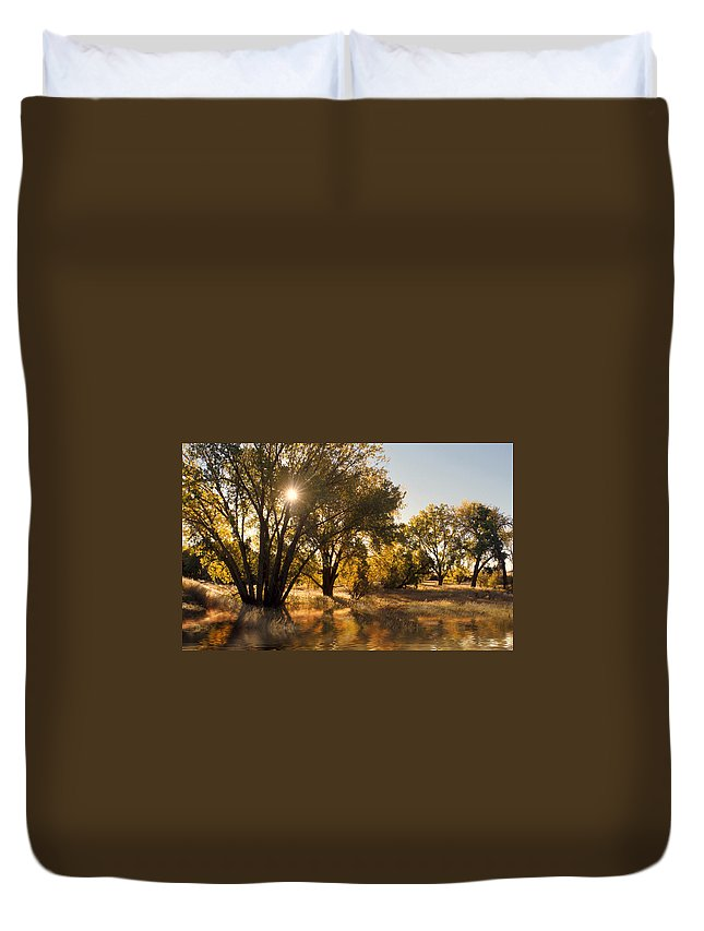 Ftrees Duvet Cover featuring the photograph Oliver Sunbursts by Jerry McElroy