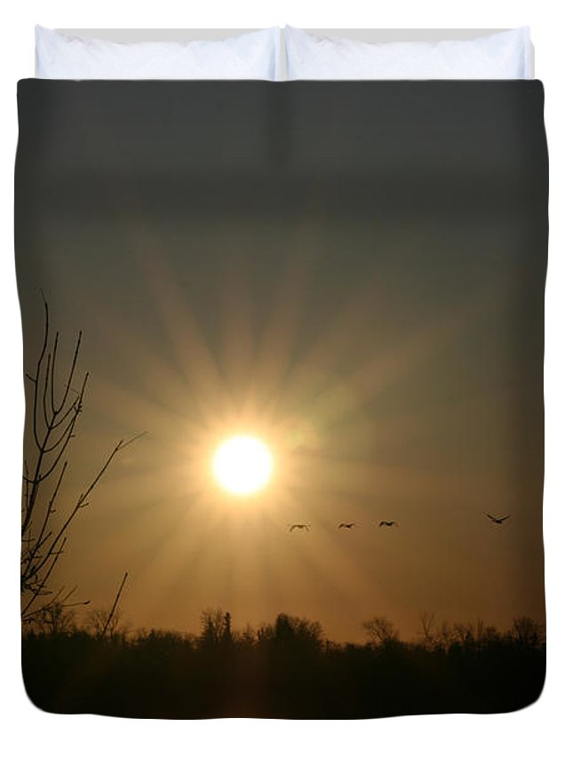 Geese Water Lake Ice Trees Nature Sunrise Sun Cold Morning Ducks Birds Duvet Cover featuring the photograph On Frozen Pond by Andrea Lawrence