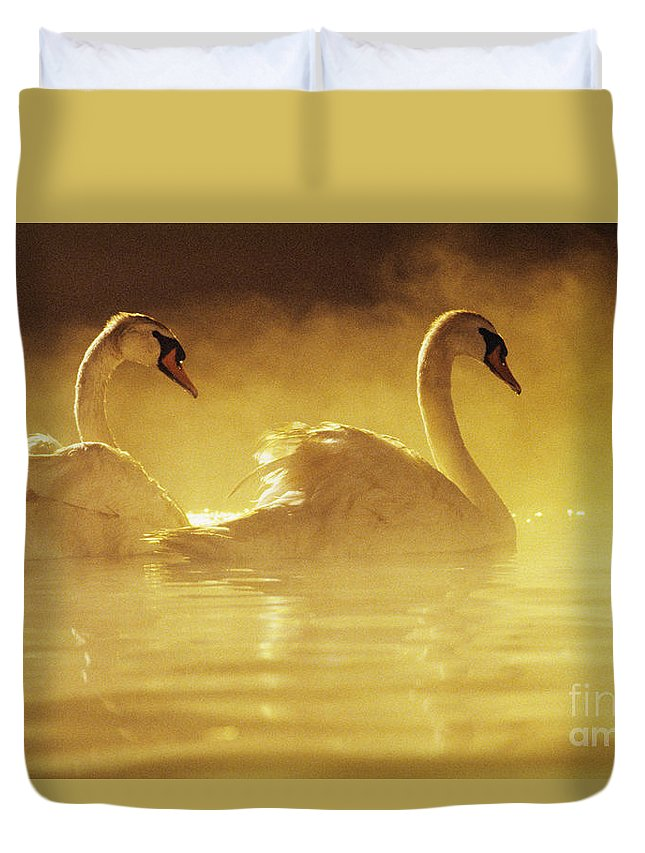 African Duvet Cover featuring the photograph On Golden Pond by Brent Black - Printscapes