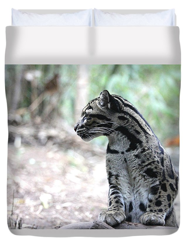 Clouded Leopard Duvet Cover featuring the photograph On Watch by Daniel Overton