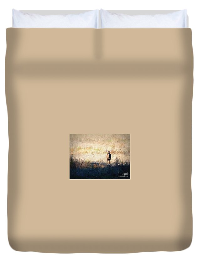 Wildlife Duvet Cover featuring the photograph One Cute Deer by Carol Groenen