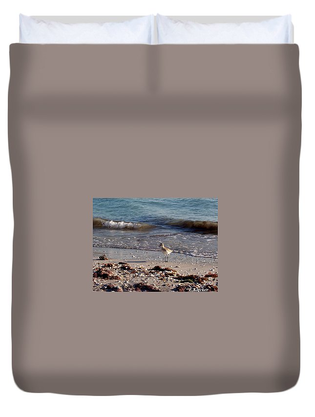 Bird Duvet Cover featuring the photograph One December Evening by Elizabeth Klecker